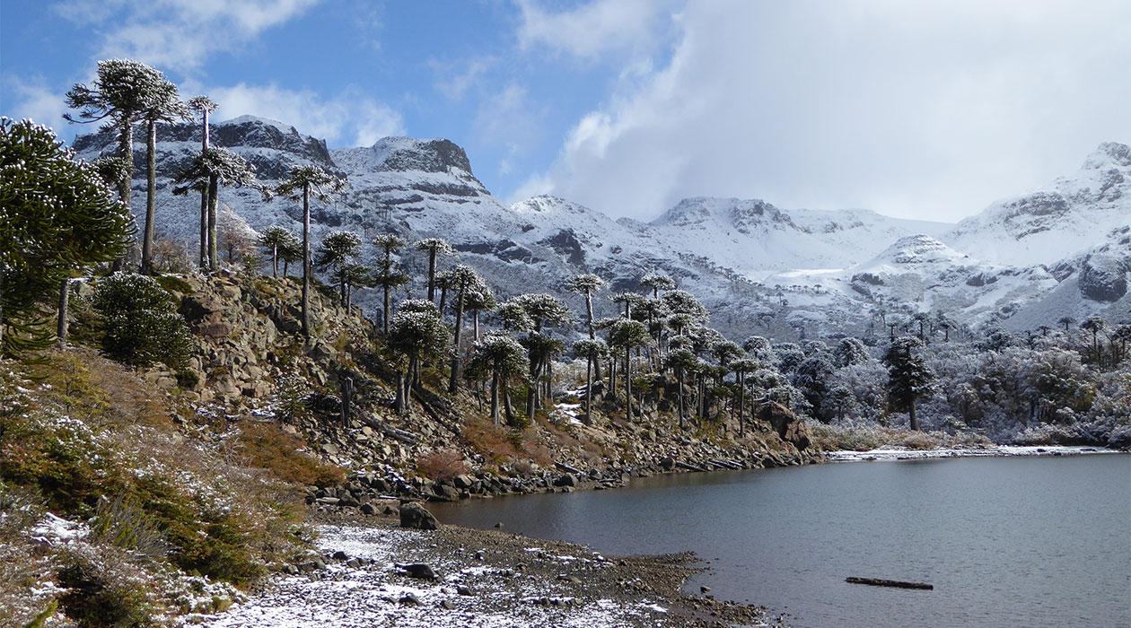 Reisen in Chile