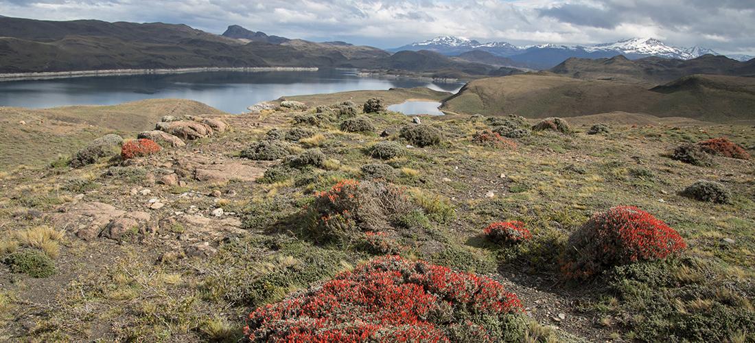 Chile - Patagonien
