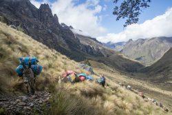 mit Gepäktieren rund um den Huascaran