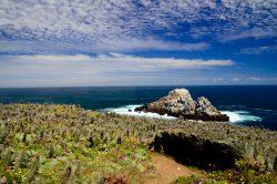 kleine Insel vorgelagert der Küste