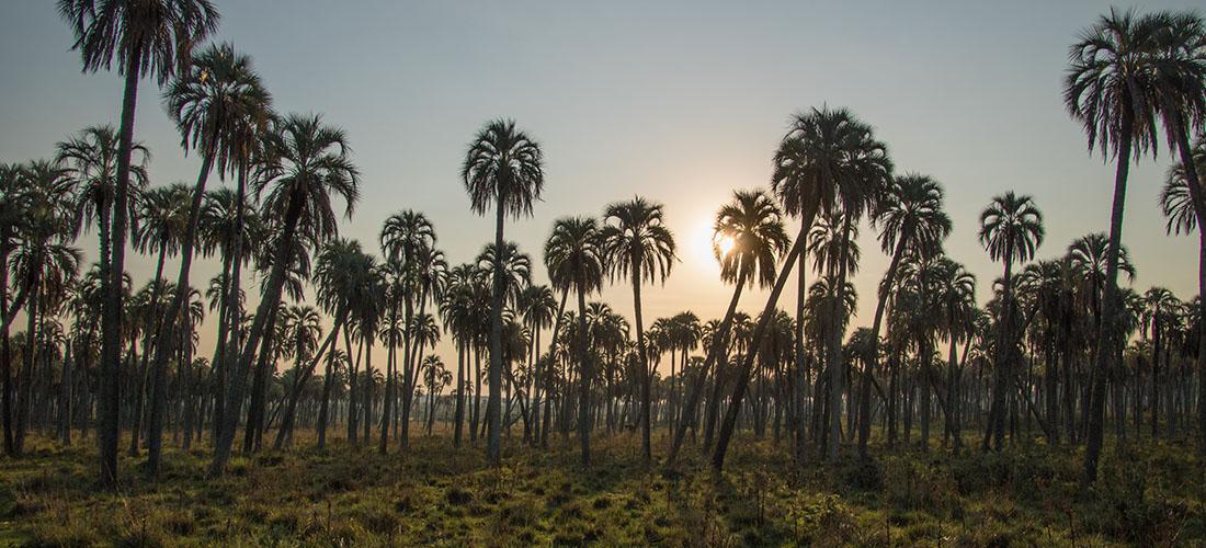 Naturparadies Argentinien