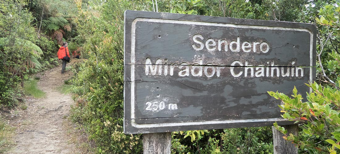 Excursion and destinations in Chile