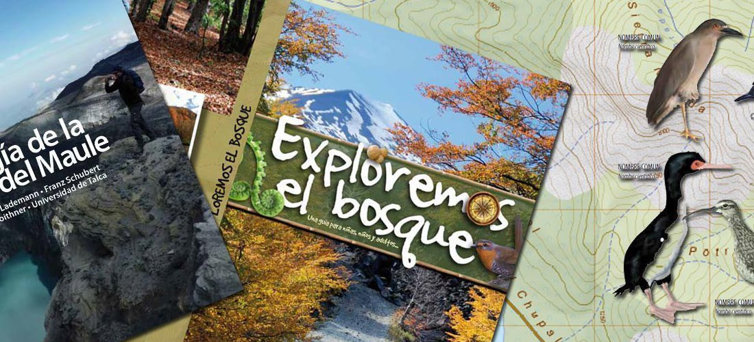 Outdoor books and hiking maps for South America