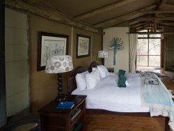 campamento en áfrica