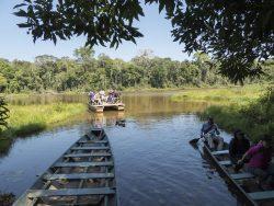 balsa en el lago en la Amazonía