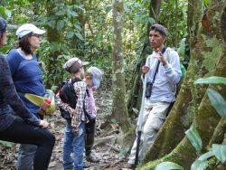 un grupo de excursionistas